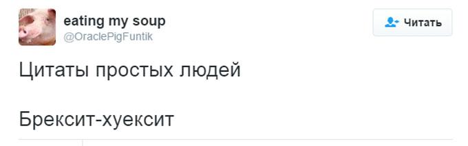 У мережі висміяли непристойний каламбур від чиновниці Путіна (2)