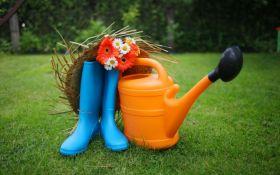 ТОП-10 причин, чому люди чекають на весну з нетерпінням