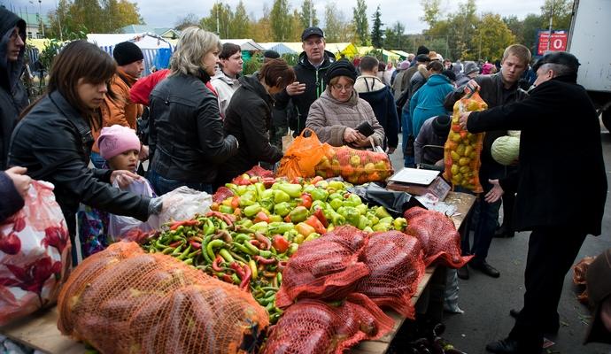 На выходных в Киеве пройдут сельскохозяйственные ярмарки
