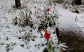 Оккупированный Крым накрыло снегом: опубликовано видео