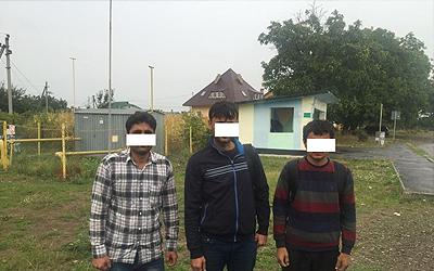 У Карпатах затримали кілька груп афганських і сирійських нелегалів