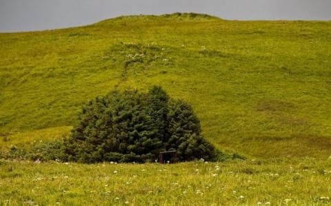 Найменший національний парк США (5 фото) (4)