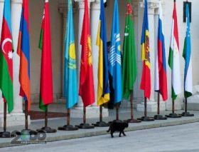 Украина готовится выйти из ряда соглашений СНГ