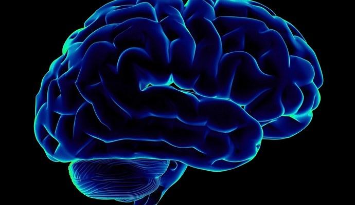 Мозг пытаются контролировать