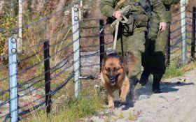 Біля українського кордону в Росії сталося зіткнення з бойовиками, є загиблі