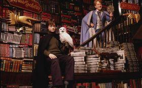 Появятся две новые книги по вселенной Гарри Поттера: названа дата