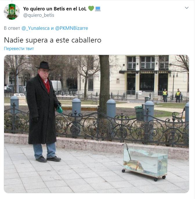 Вигулюють іграшкових собак і курей: іспанці знаходять смішні приводи вийти на вулицю під час карантину (3)