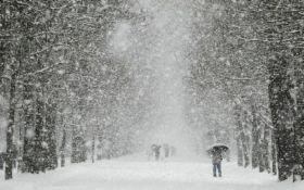 В Украину идет лютая зима с морозами и снегопадами: синоптики сделали новый прогноз