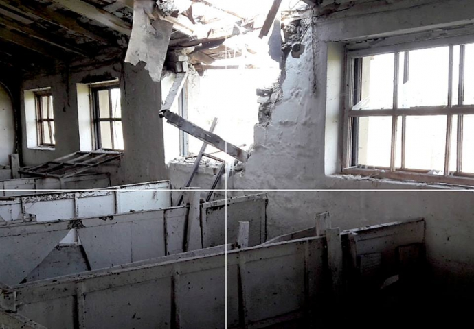 Бойовики ДНР вбили тварин: з'явилися нові фото з фронту (1)