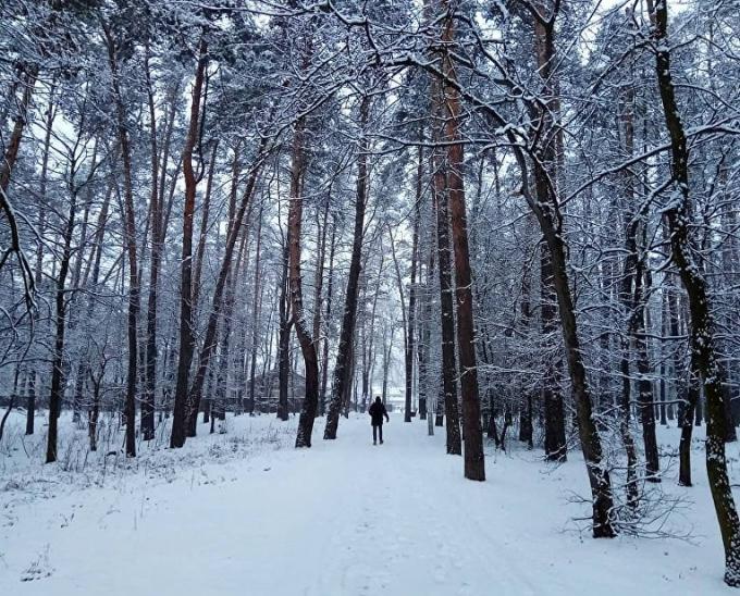 Киев накрыл неожиданный снегопад: в сети публикуют зрелищные фото и видео (5)