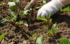 Способ рыхления почвы