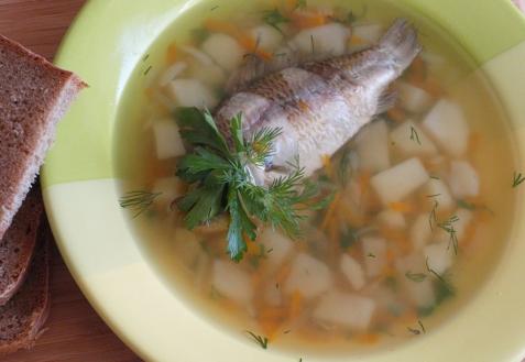 Рецепт - Уха из карасей