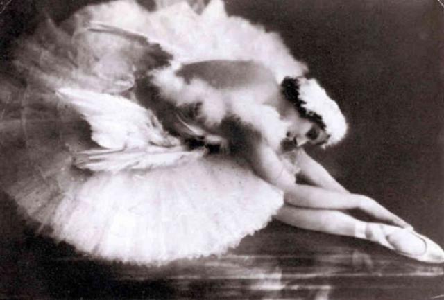 Анна Павлова. «Умирающий лебедь»
