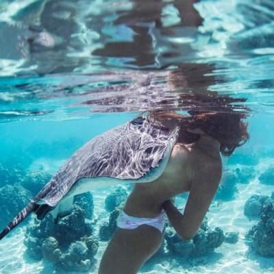 «Королева скатов»: невероятная подводная фотосессия. Фото