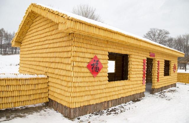 Фото 1. В Китае появился кукурузный домик (ФОТО)