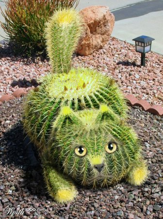 Креативные растительные образы животных (30 фото)