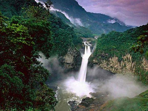 Тропический лес, расположенный в Папуа Новой Гвинее