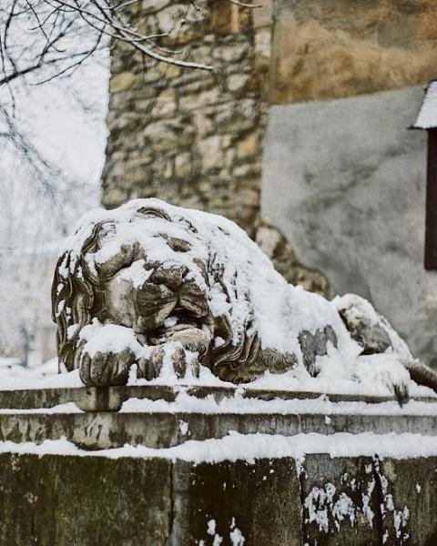 """Результат пошуку зображень за запитом """"Снегопад превратил Львов в город - сказку:впечатляющие фото."""""""
