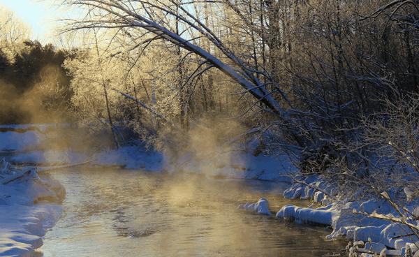 zima29