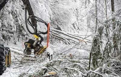 Последствия снежной бури в Европе в свежих снимках. Фото