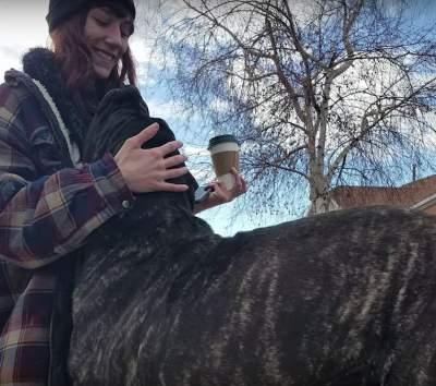 В Сети показали самого большого в мире щенка. Фото