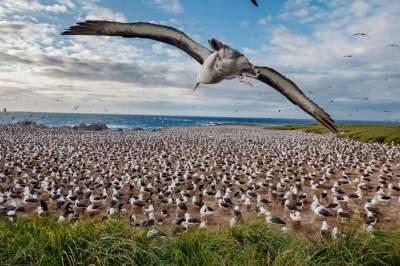 Воздух, земля и море на страницах National Geographic. Фото