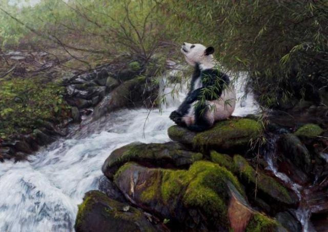 Ленивая панда. Автор: John Banovich.