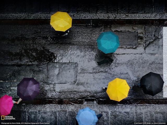 Разноцветные зонтики в романтической Флоренции