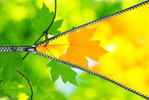 Resultado de imagem para лето осень