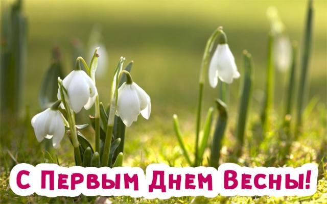 Картинки по запросу с первым днем весны