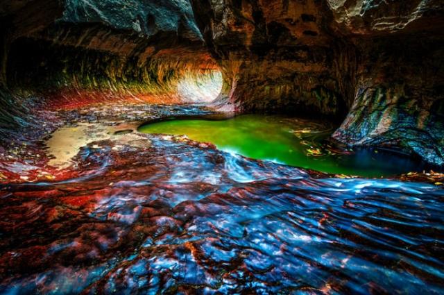 Национальный парк Зайон, штат Юта, США. Автор: Leonel Torres.