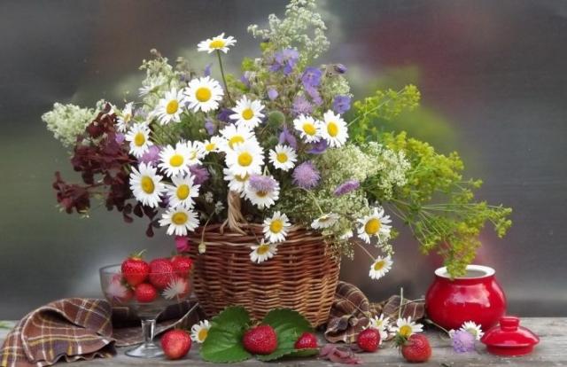 Фото цветы и ягоды