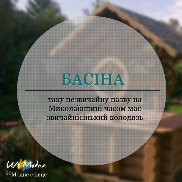 Модне слівце Басіна, український сленг, неологізми, жаргонізми