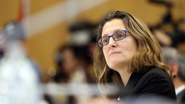 Фамилия мамы Фриланд — Хомяк. Фото: AFP