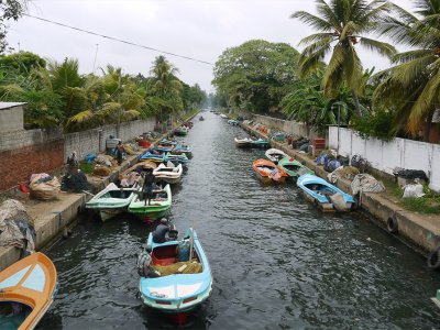 Шри-Ланка: три взгляда на жизнь души
