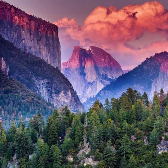 Национальный парк Йосемити, Калифорния. Автор: Murali Achanta.