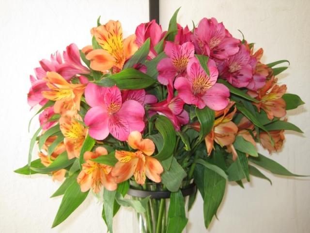 Картинки по запросу букетов цветов скачать бесплатно