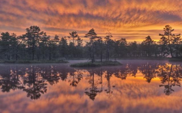 Утро восход солнца озеро туман