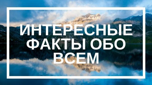 10 интересных фактов обо всем на свете: zinchenkosergey — LiveJournal