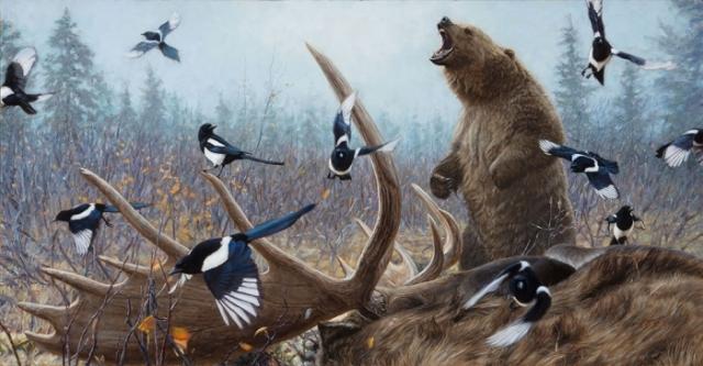 Медведь и сороки. Автор: John Banovich.