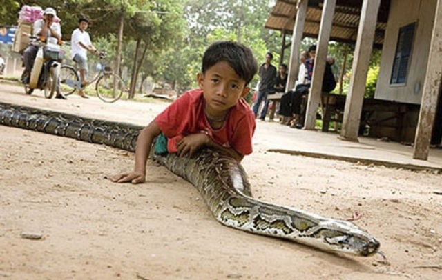 Камбоджи: Мальчик и его пятиметровый домашний питомец
