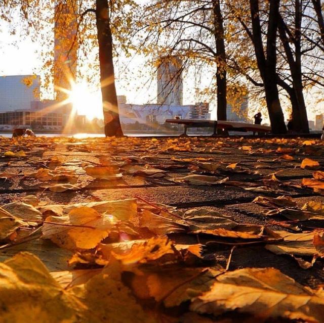Осень, но не холодно ничуть, Солнце озарило землю светом. Бабье лето начало свой путь, Путь ... - 3