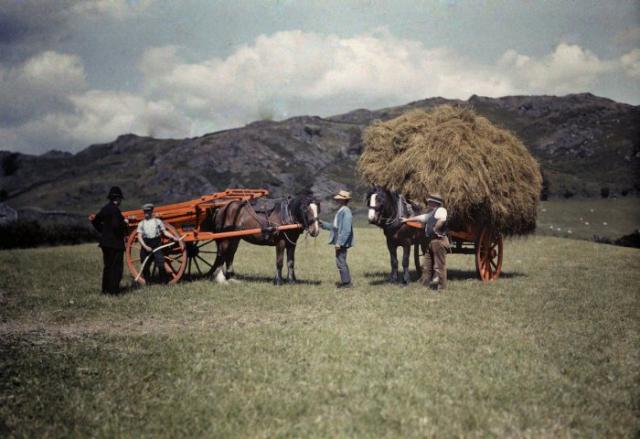 Полицейский и фермеры, собирающие сено в Ланкашире.