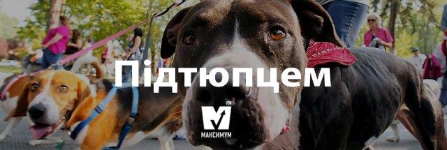 10 красивих українських слів, якими ви здивуєте своїх друзів - фото 193096