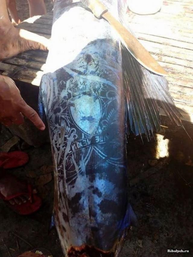 рыба с татуировкой