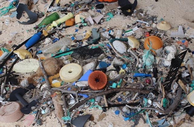 На небольшом острове насобиралось более 17 тонн пластикового мусора.
