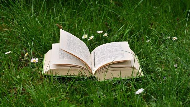 Книги развивают фантазию и память, а также служат неплохим антидепрессантом. Фото: pixabay.com