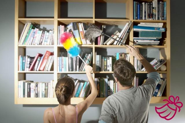 Как ухаживать за книгами веливер, клининг, книги, уборка, чистка