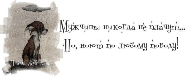 Прикольные картинки с надписями