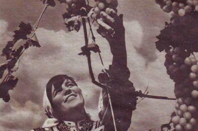 """Результат пошуку зображень за запитом """"Образ женщины в советской фотоклассике - фото."""""""